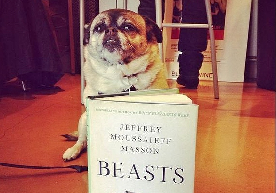 "Jeffrey Masson's ""Beast"""